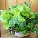 グリーンカラーの野菜ブーケ・ナチュラルバスケット入り(税込※送料別)