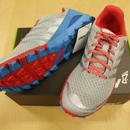 【26・26.5cmのみ!】TRAILTALON  250  MS (inov-8)