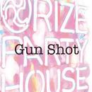 16.Gun Shot