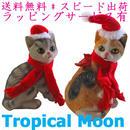 クリスマス 飾り オブジェ 猫 可愛い 置物 オーナメント 2体セット i0254