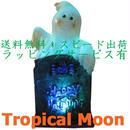 ハロウィン オブジェ 飾り インテリア 置物 オーナメント LED ライト イルミネーション i0251