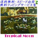 刺繍絵 アート ハンドメイド 芸術 作品 ベトナム 雑貨 睡蓮と水鳥 vi0003