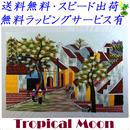 刺繍絵 アート ハンドメイド 芸術 作品 ベトナム 雑貨 ベトナムの街並み vi0009
