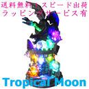 ハロウィン オブジェ ドラゴン かぼちゃ ランタン LED ライト ハウス i0252