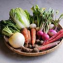 野菜ボックスお試しセット