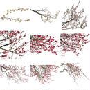 梅 切り抜きセット素材  - Plum trees  2u_02