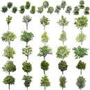 鳥瞰樹木30個セット Bird-eye-set01