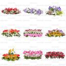 花の切り抜き素材 9個セット 寄せ植え F_001