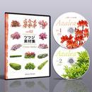 vol.02ツツジ素材集 [DVD]  5a26