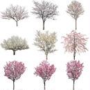 桜 切り抜き素材セット  - Cherry Blossoms   sa_011