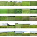 無料 - 風景写真  セット 440個 photo