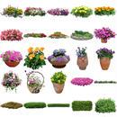 無料 - 花・低木・観葉植物素材セット 49個 free_flower