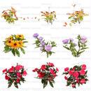 花の切り抜き素材 9個セット F_012