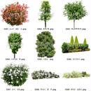 ガーデン素材 9個セット  G9_041