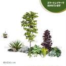 ガーデン植栽パースセット  GP001_03