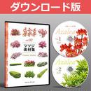vol.02ツツジ素材集 [ダウンロード版] 5a24