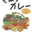 ビーフカレー(中辛)