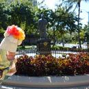 楽園ハワイツアー!ハロウィンスペシャル!仮装をして参加をする3泊5日ハワイ旅行』