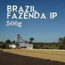 【SPECIALTY COFFEE】500g Brazil Fazenda IP 1.200m Natural / ブラジル ファゼンダIP ナチュラル