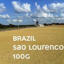 【SPECIALTY COFFEE】100g Brazil Sao Lourenco 1.000m Natural / ブラジル サンロレンツォ ナチュラル