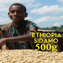 【SPECIALTY COFFEE】500g Ethiopia Sidamo G2 1.850-2.000m Fully Washed / エチオピア シダモ G2 フリーウォッシュト
