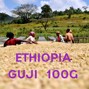 【SPECIALTY COFFEE】100g Ethiopia Sidamo Guji G1 1,750-2,300m Fully Washed / エチオピア シダモ グジ G1 フリーウォッシュト