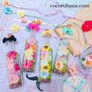 Bottle Flower cocorohana S  Premium order
