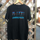 Patagonia Bowery Nyc FCD T-shirt.