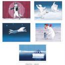 庄野ナホコ「北極サーカス」ポストカード