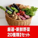 うりぼう野菜セット5000