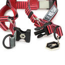 WOLFGANG VertDash HARNESS ( M size )