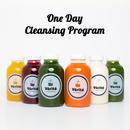 【ビューティコース】ONE DAYプログラム - クレンジングプログラム(6本×1日)