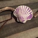 シェル コインケース  purple