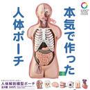 STC 人体解剖模型ポーチ