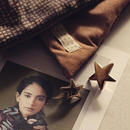 Gold star pin 【small】