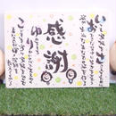 フルオーダー【キャンバスF6】