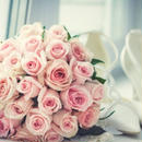 女性向け結婚アフィリエイト「結婚の統計データー」記事テンプレート!(1500文字)
