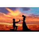 男性向け結婚アフィリエイト「女性を感動させるプロポーズ法」記事テンプレ(2700文字)