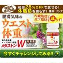 脂肪燃焼サプリ「メタストン」商品紹介記事テンプレート!(200文字)