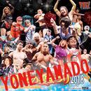 【DVD】YMZの夏まつり2018