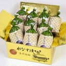 【34】水なすの浅漬(ぬか漬) 金箱 10個包装入