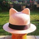 STRAW CAT