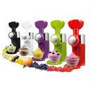 フルーツアイスクリームマシン 業務用 家庭用 自動冷凍フルーツデザートマシン ビッグボス Swirlio 110V(国内対応)