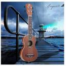 ソプラノウクレレ 21インチ 本体 マホガニー サペリ 高品質 ハワイアン 木製 ウッド 特殊