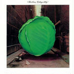 Cabbage Alley / Meters
