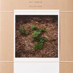 WIESE XXI-XLVIII by Anne Schwalbe [SIGNED]