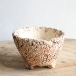 Pottery  by  Wood   no.044  φ10.5cm   タイポット