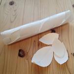 Yasuhiro Suzuki | 紙の葉