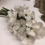ナデシココサージュ (white)