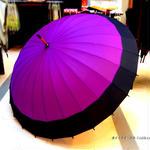 60㎝ 傘専門店 通販 東京 メンズ レディース 雨傘 サビにくい 旅傘【蛇の目 24本骨 深紫 】